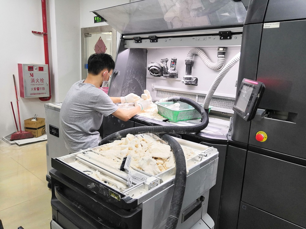 SLM 3D Printing